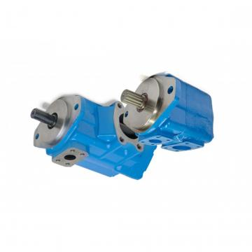 Daikin V8A1RX-20S2 piston pump