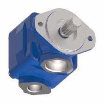 Daikin V15A2RX95 piston pump