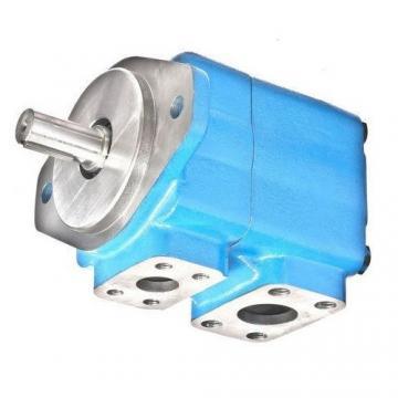 Yuken PV2R14-17-153-F-REAA-40 Double Vane Pumps